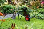 Paphos Gardeners