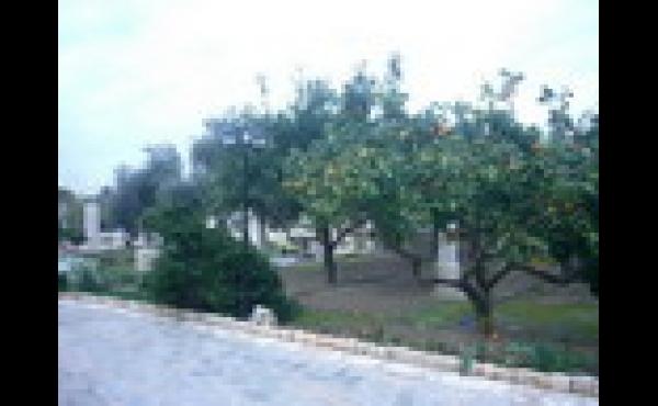 argaka-L3299-50a