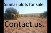 Prime land for sale and development, Kissonerga