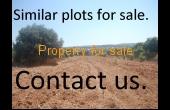 A huge plot of land for sale in Chloraka